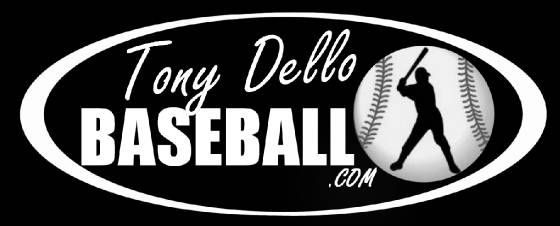 Professional Baseball Hitting Lessons Tony Dello Arizona Diamondbacks